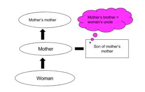 clat logical reasoning blood relations