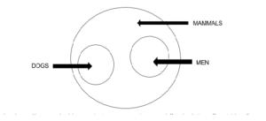 clat logical reasoning syllogisms